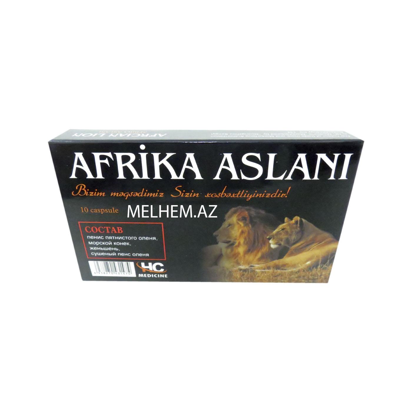 AFRİKA ASLANI